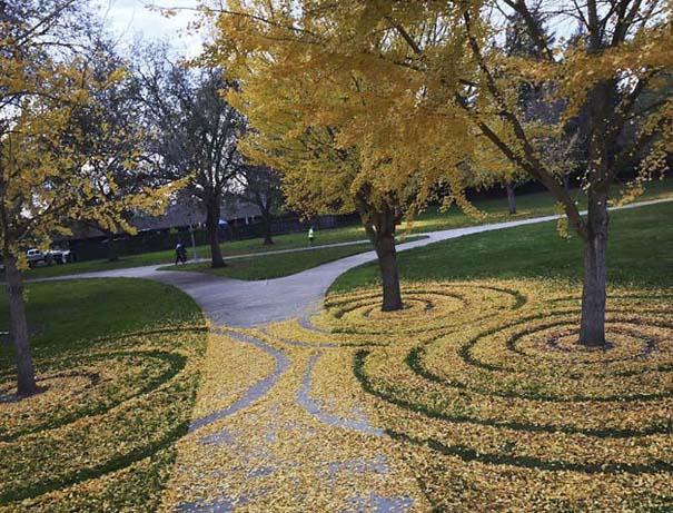 Καλλιτέχνιδα μετατρέπει πεσμένα φύλλα σε εκπληκτικά έργα τέχνης (11)
