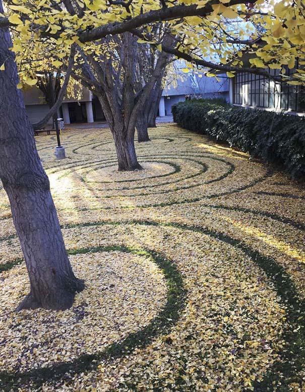 Καλλιτέχνιδα μετατρέπει πεσμένα φύλλα σε εκπληκτικά έργα τέχνης (13)