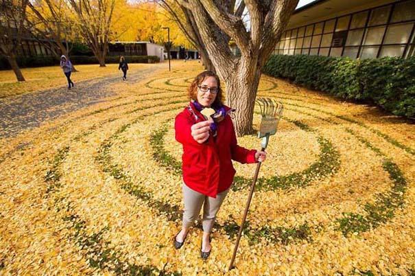 Καλλιτέχνιδα μετατρέπει πεσμένα φύλλα σε εκπληκτικά έργα τέχνης (17)