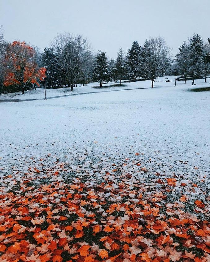 Όταν το Φθινόπωρο συνάντησε τον Χειμώνα | Φωτογραφία της ημέρας