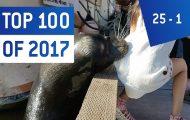 Τα 100 κορυφαία βιντεάκια που ξεχώρισαν το 2017 (Μέρος 4ο)