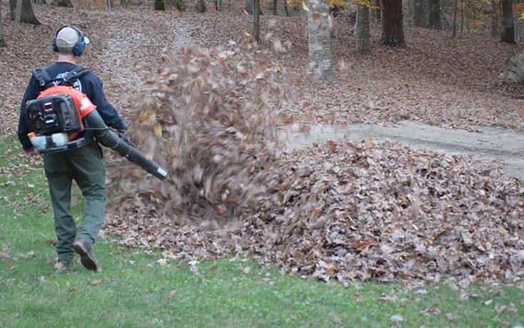 Ανυποψίαστος μπαμπάς καθάριζε την αυλή με φυσητήρα φύλλων, όταν ξαφνικά...