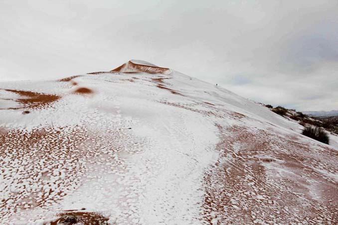 Απίστευτες φωτογραφίες από την έρημο Σαχάρα, όπου χιόνισε για τρίτη φορά τα τελευταία 40 χρόνια! (5)