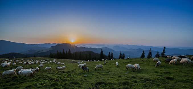 Φωτογράφος καταγράφει την ξεχωριστή ομορφιά της Ρουμανίας (15)