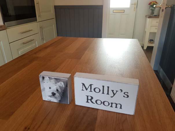 Κατασκευάζοντας ένα υπέροχο δωμάτιο για το σκύλο κάτω από τη σκάλα (13)