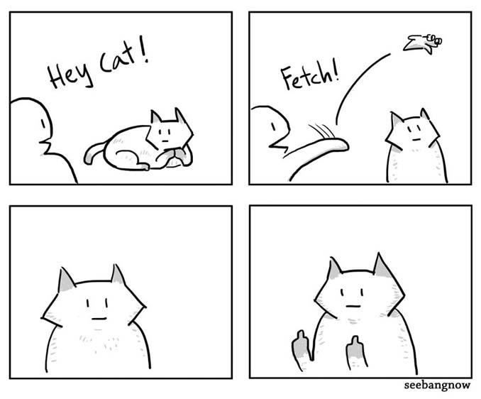 Ξεκαρδιστικά σκίτσα αποκαλύπτουν την πραγματικότητα του να έχεις γάτα (3)