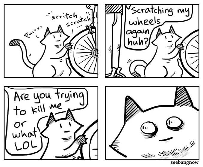 Ξεκαρδιστικά σκίτσα αποκαλύπτουν την πραγματικότητα του να έχεις γάτα (6)
