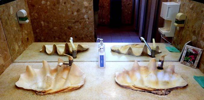 Οι δημόσιες τουαλέτες στην Ιαπωνία έχουν ότι σχήμα μπορείτε να φανταστείτε... (7)