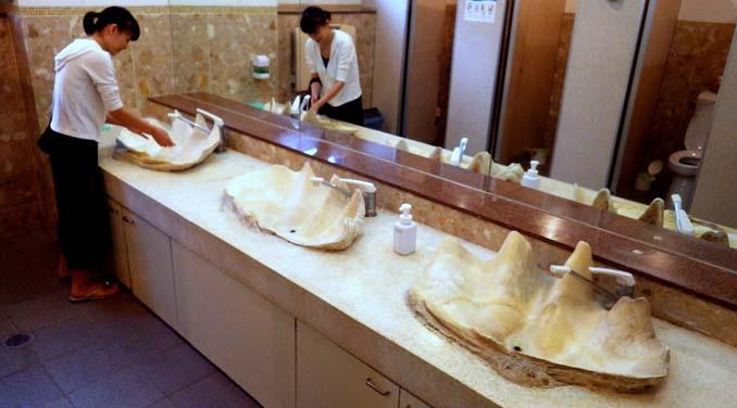 Οι δημόσιες τουαλέτες στην Ιαπωνία έχουν ότι σχήμα μπορείτε να φανταστείτε... (10)