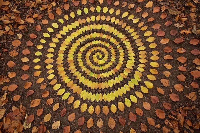 Καλλιτέχνης τακτοποιεί αντικείμενα της φύσης σε απίστευτους σχηματισμούς και το αποτέλεσμα θα σας μαγέψει (1)