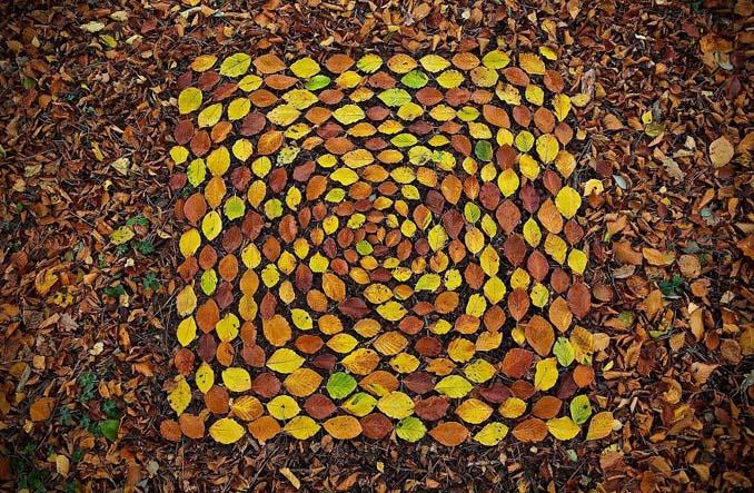 Καλλιτέχνης τακτοποιεί αντικείμενα της φύσης σε απίστευτους σχηματισμούς και το αποτέλεσμα θα σας μαγέψει (3)