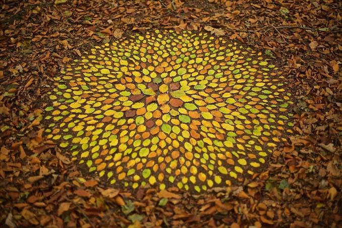 Καλλιτέχνης τακτοποιεί αντικείμενα της φύσης σε απίστευτους σχηματισμούς και το αποτέλεσμα θα σας μαγέψει (5)