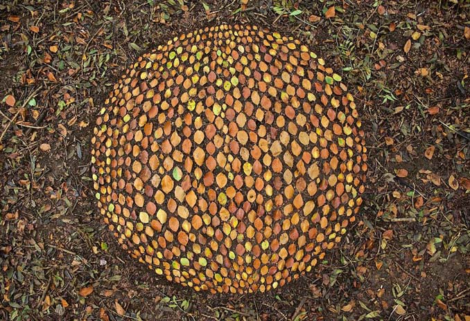 Καλλιτέχνης τακτοποιεί αντικείμενα της φύσης σε απίστευτους σχηματισμούς και το αποτέλεσμα θα σας μαγέψει (8)