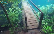 Πλημμύρα στη Βραζιλία μετέτρεψε ένα φυσικό μονοπάτι σε σουρεαλιστικό τοπίο βγαλμένο από κάποιον φανταστικό κόσμο