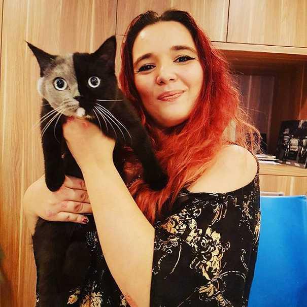 Σπάνιο γατάκι που γεννήθηκε με δύο πρόσωπα, εξελίχθηκε σε μια πανέμορφη γάτα (13)