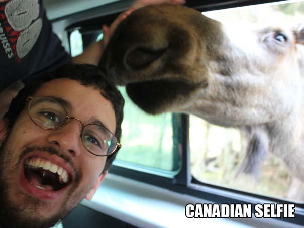 Εν τω μεταξύ, στον Καναδά... #46 (2)