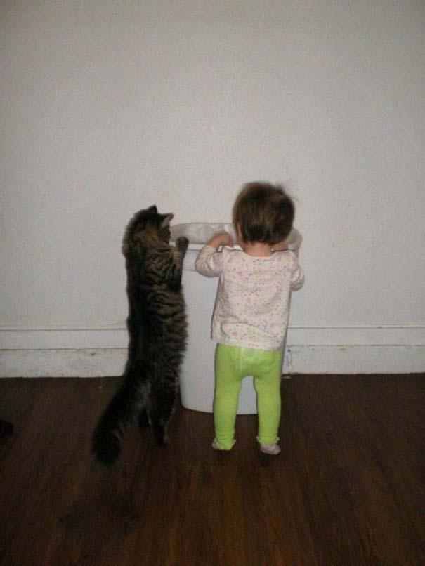 Γάτες που... κάνουν τα δικά τους! #84 (6)