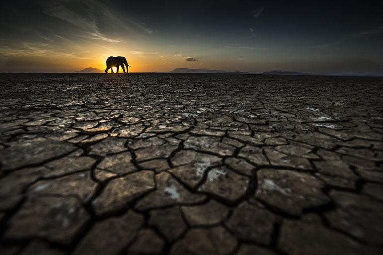 Διψασμένη Γη | Φωτογραφία της ημέρας