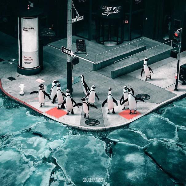 Γάλλος καλλιτέχνης δημιουργεί σουρεαλιστικές εικόνες ζώων με το Photoshop (2)