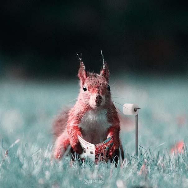 Γάλλος καλλιτέχνης δημιουργεί σουρεαλιστικές εικόνες ζώων με το Photoshop (5)