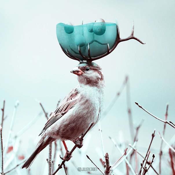 Γάλλος καλλιτέχνης δημιουργεί σουρεαλιστικές εικόνες ζώων με το Photoshop (8)