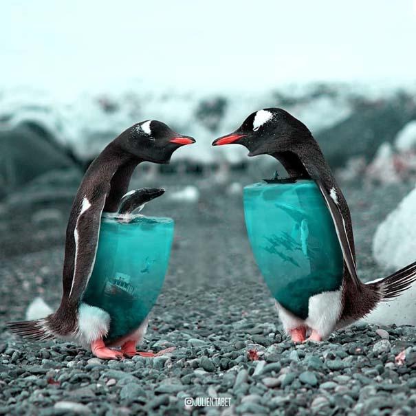 Γάλλος καλλιτέχνης δημιουργεί σουρεαλιστικές εικόνες ζώων με το Photoshop (12)
