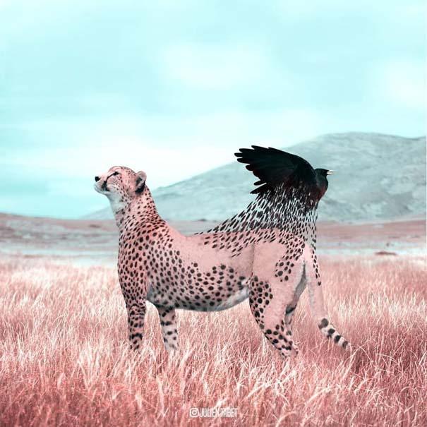 Γάλλος καλλιτέχνης δημιουργεί σουρεαλιστικές εικόνες ζώων με το Photoshop (20)