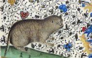 Οι ζωγράφοι του Μεσαίωνα είχαν μια δυσκολία στο να ζωγραφίζουν γάτες (1)