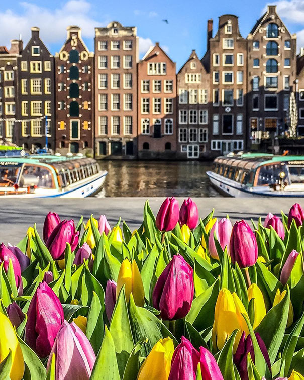Άνοιξη στο Άμστερνταμ | Φωτογραφία της ημέρας