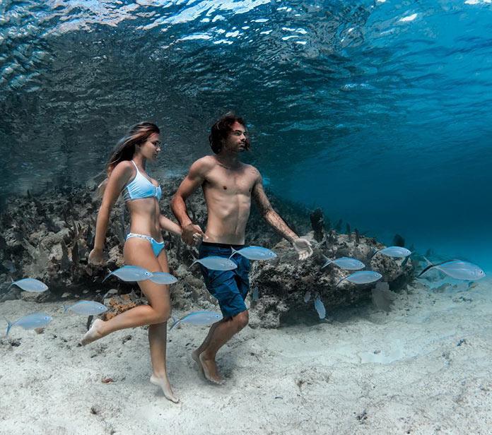 Ρομαντικός περίπατος... στο βυθό της θάλασσας   Φωτογραφία της ημέρας