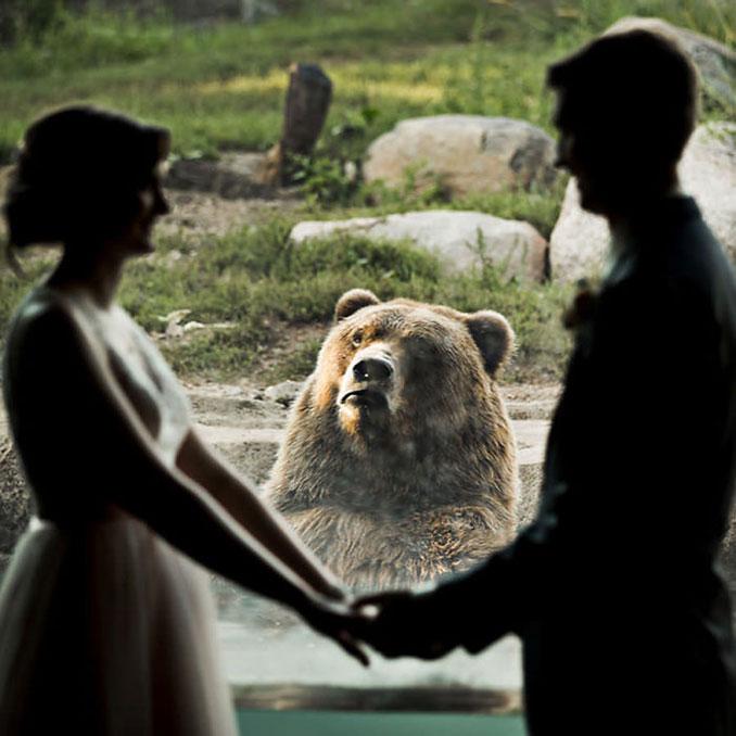 Ζευγάρι αποφάσισε να παντρευτεί σε ζωολογικό κήπο και η αντίδραση της αρκούδας τα λέει όλα (2)
