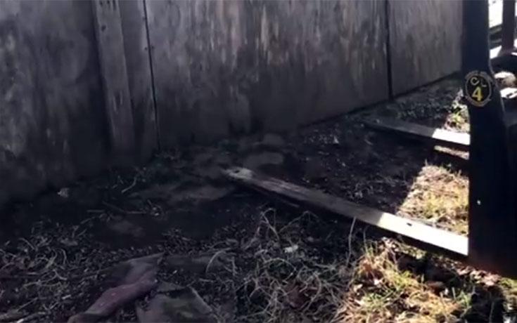 Αυτή η μικρή καλύβα έκρυβε μια ανατριχιαστική έκπληξη από κάτω της (Video)