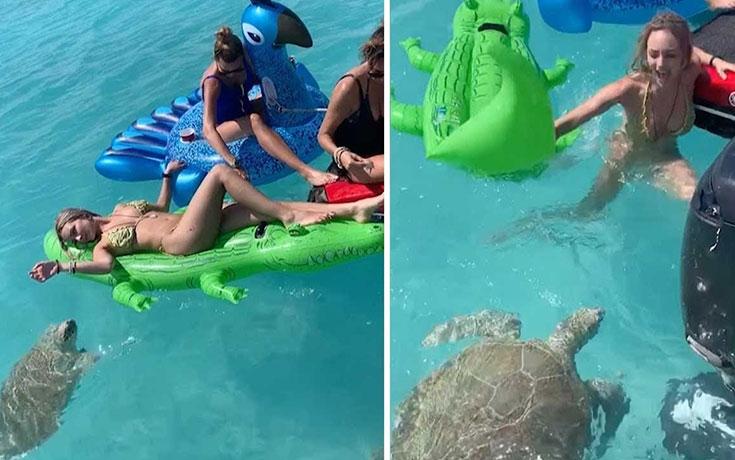 Θαλάσσια χελώνα επιτίθεται σε γυναίκα που κάνει ηλιοθεραπεία πάνω σε στρώμα (Video)